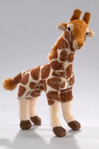 Giraf staand