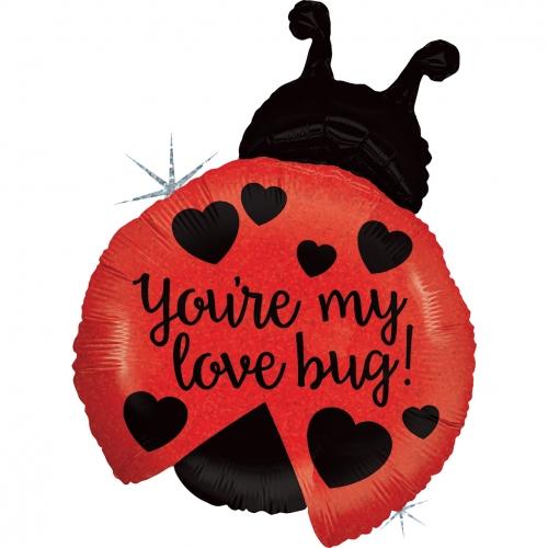 Ladybug Go Love
