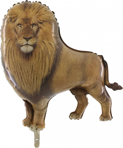 Leeuw SH