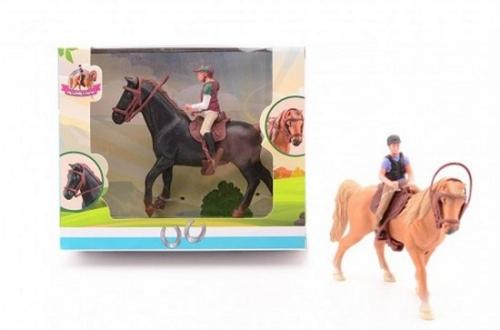 Paard met Ruiter Assorti