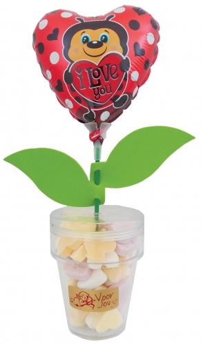 Flower Candy ladybug heart