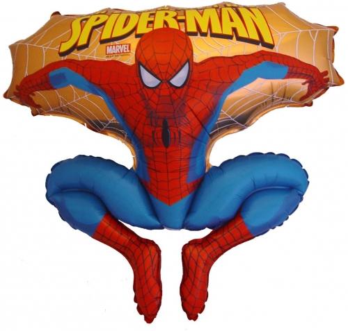 Spiderman Life