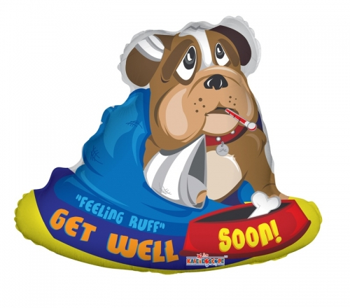 Get Well Soon Bull Dog