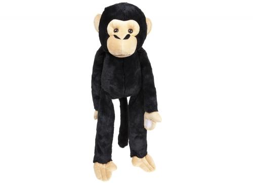 Chimpanzee groot