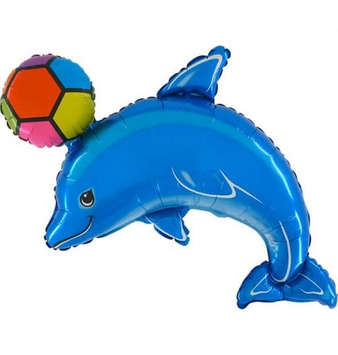 Dolfijn met Bal