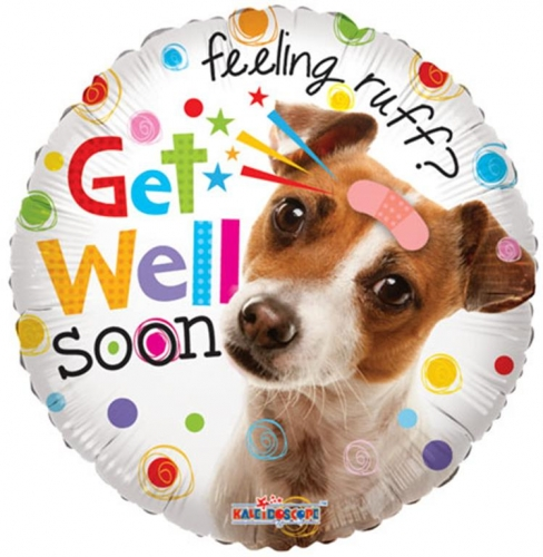 Get Well Dog
