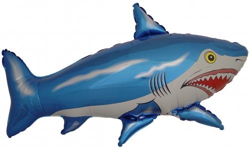 Haai blauw