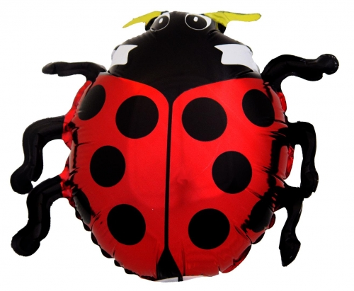 Lady Bug ML