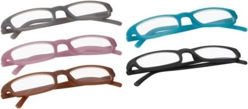 Bril, Leesbril in hoes