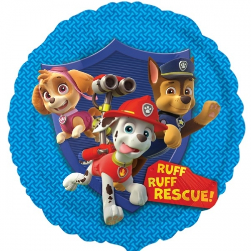 Paw Patrol Group