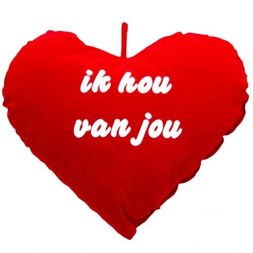Groot kussen hart 30 cm